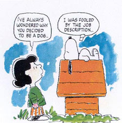 job-description-peanuts